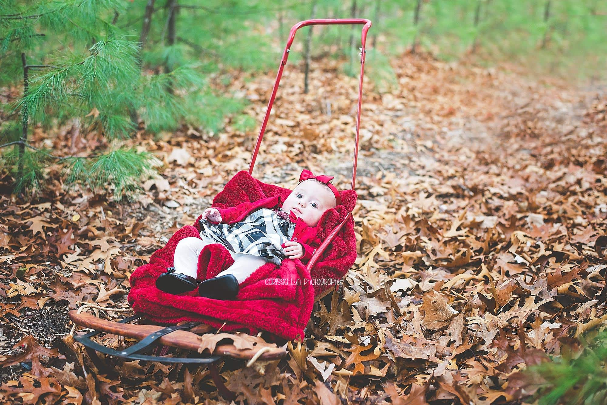 holiday-mini-baby-girl-red-sled
