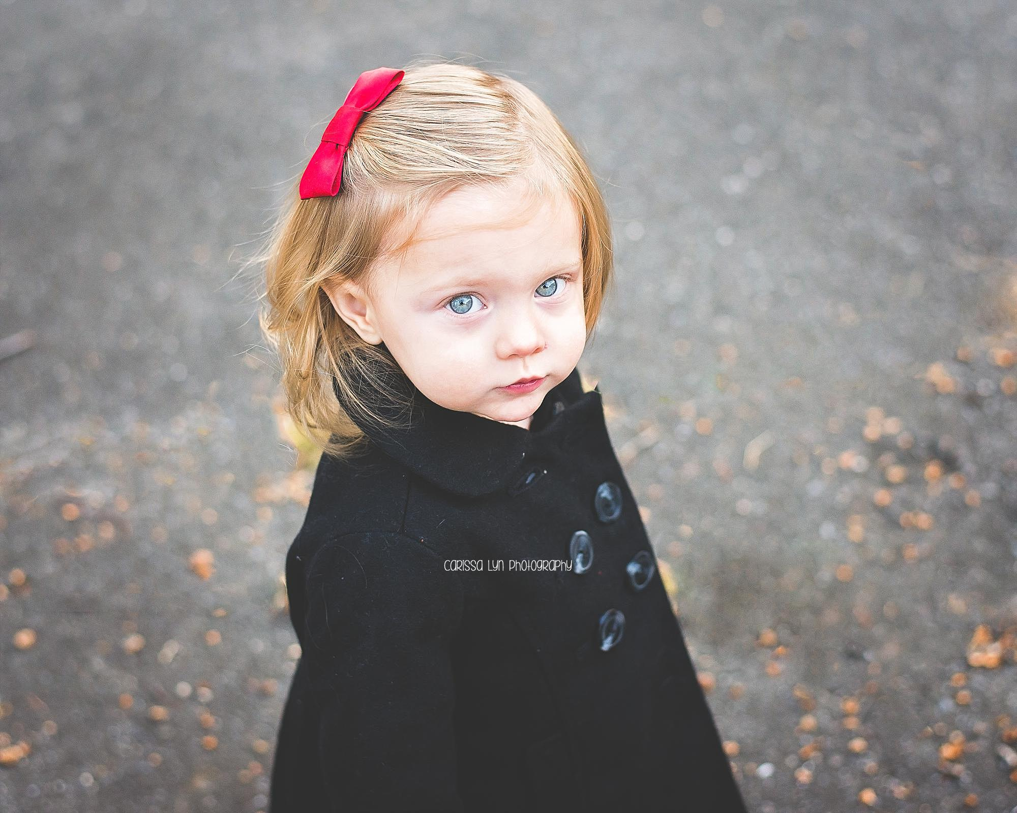 holiday-minis-toddler-girl-red-bow
