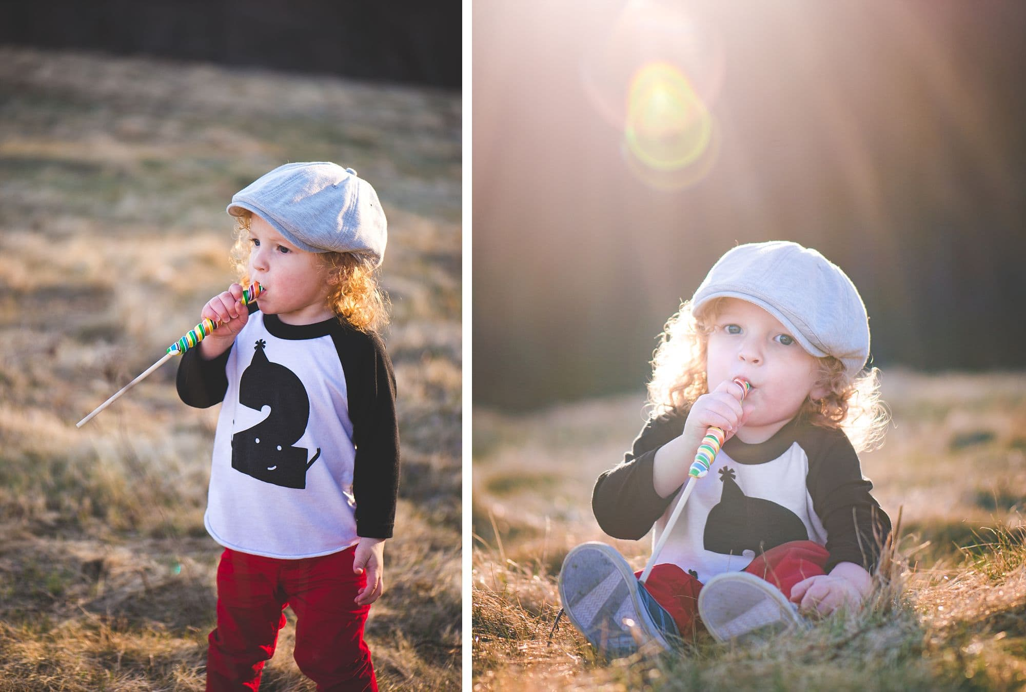 Two year old boy in a hat sits in a field with a beautiful sunflare in the portrait